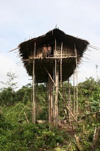 Kmen Korowai Dalam– Papua New Guinea 2009