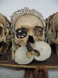 Asmat skull