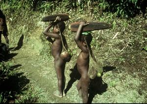 Papua Yali